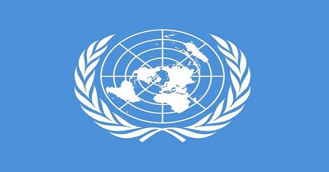 Derechos Humanos: México en la ONU